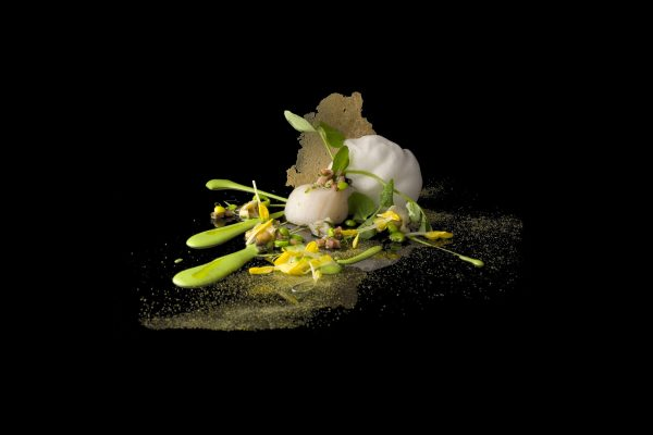 Diver Scallops with Spring Peas and Clanms by Charlie Trotter, from the Small Things Savory eBook, Photo by Battman
