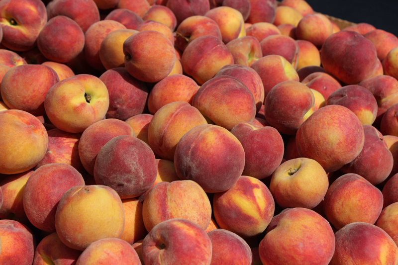 Peaches from Kernan Farms