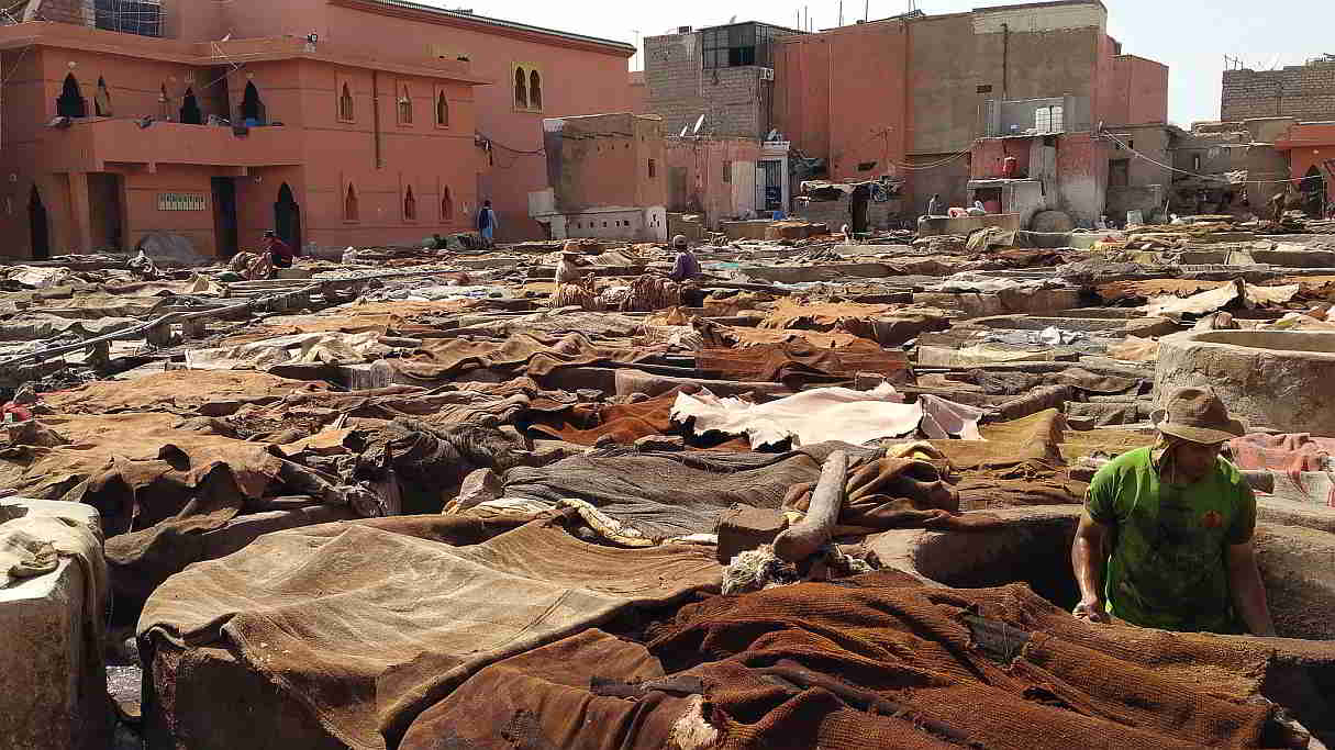 Leather tanning in progress. Marrakesh. 2017