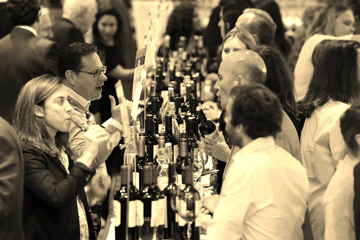 Great Wines of the Andes