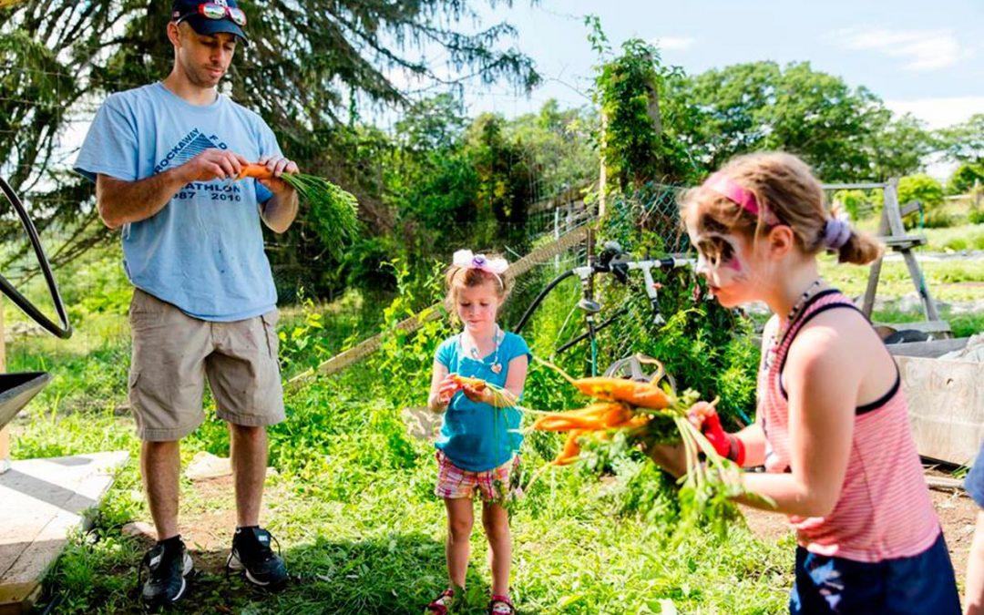 Glynwood's Food + Farm Day